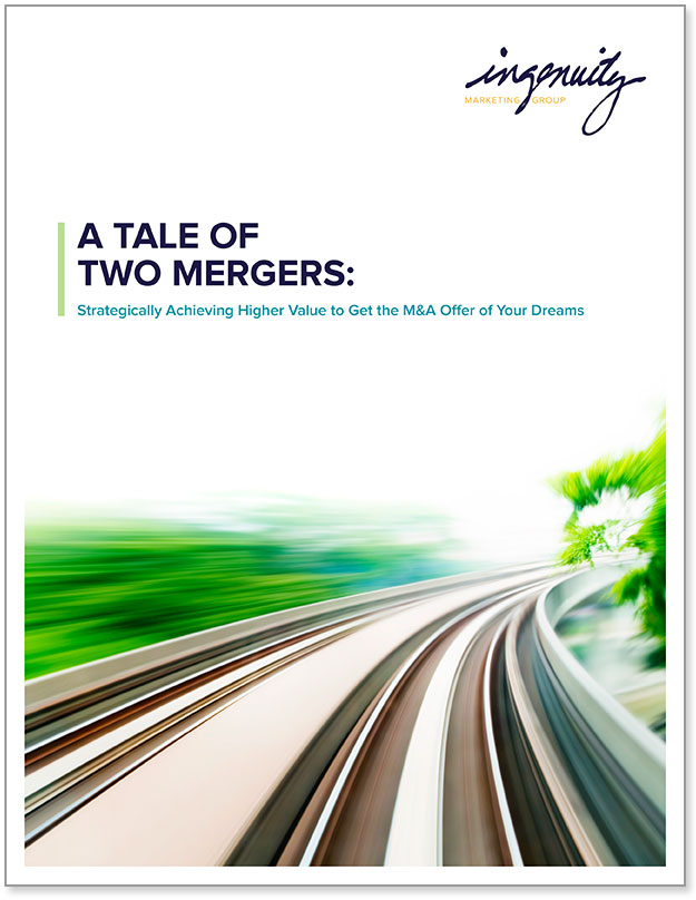 Cover of A Tale of Two Mergers.