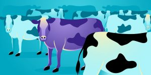 Copywriting: Is Your Content a Purple Cow?